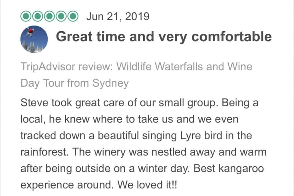 Wildlife-Waterfalls-Wine-review-Great-Times-And-Very-Comfortable-21-Jun-2019.jpg-Steve took great care of our small group. Being a local, he knew where to take us and we even tracked down a beautiful singing Lyre bird in the rainforest. The winery was nestled away and warm after being outside on a winter day. Best kangaroo experience around. We loved it!!