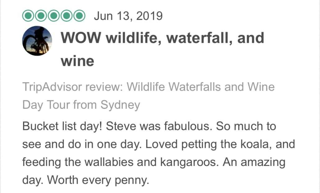 Wildlife-Waterfalls-Wine-review-Wow-Wildlife-Waterfalls-Wine-13-Jun-2019.jpg-Bucket list day! Steve was fabulous. So much to see and do in one day. Loved petting the koala, and feeding the wallabies and kangaroos. An amazing day. Worth every penny.