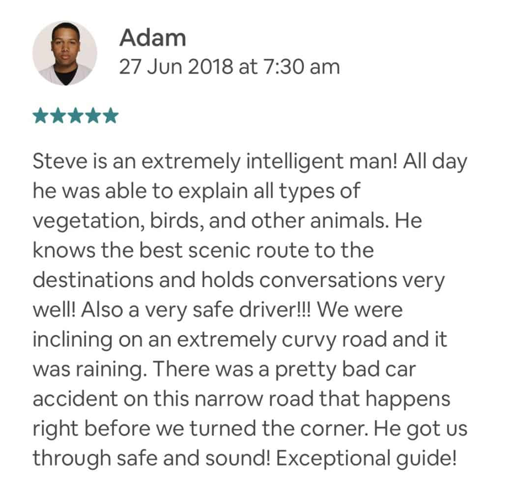 Steve is an extremely intelligent man! All day he was able to explain all types of vegetation, birds, and other animals. He knows the best scenic route to the destinations and holds conversations very well! Also a very safe driver!!! We were inclining on an extremely curvy road and it was raining. There was a pretty bad car accident on this narrow road that happens right before we turned the corner. He got us through safe and sound! Exceptional guide!