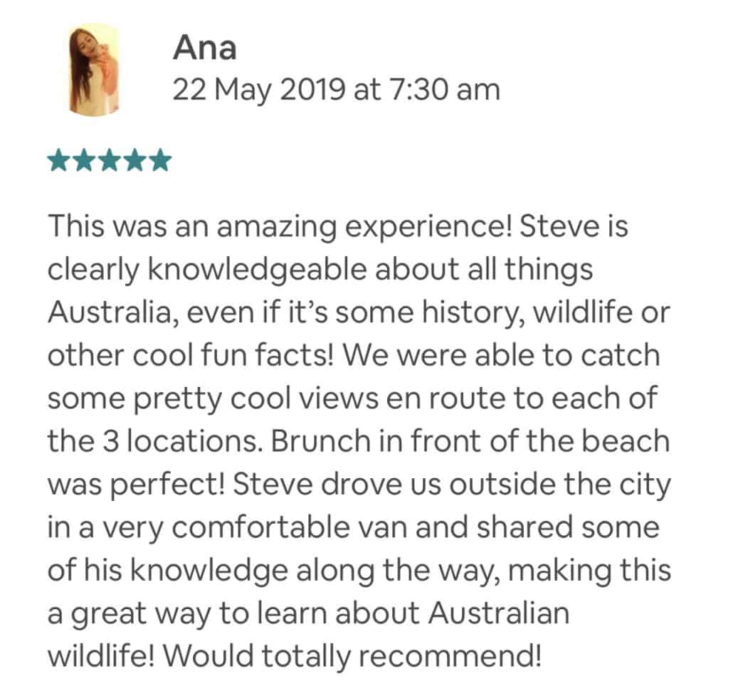 This was an amazing experience! Steve is clearly knowledgeable about all things Australia, even if it's some history, wildlife or other cool fun facts! We were able to catch some pretty cool views en route to each of the 3 locations. Brunch in front of the beach was perfect! Steve drove us outside the city in a very comfortable van and shared some of his knowledge along the way, making this a great way to learn about Australian wildlife! Would totally recommend!