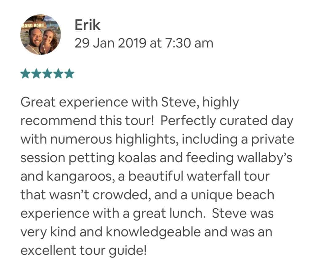 Great experience with Steve, highly recommend this tour! Perfectly curated day with numerous highlights, including a private session petting koalas and feeding wallaby's and kangaroos, a beautiful waterfall tour that wasn't crowded, and a unique beach experience with a great lunch. Steve was very kind and knowledgeable and was an excellent tour guide!