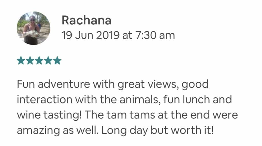 Fun adventure with great views, good interaction with the animals, fun lunch and wine tasting! The tam tams at the end were amazing as well. Long day but worth it!