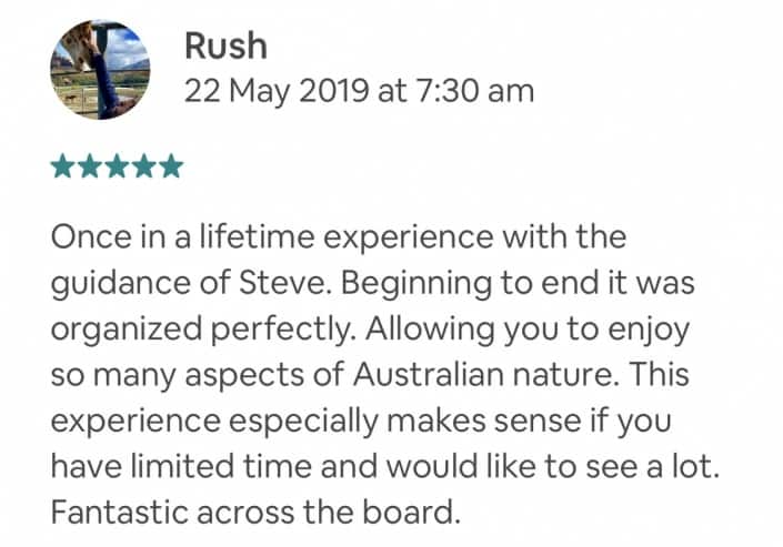 Once in a lifetime experience with the guidance of Steve. Beginning to end it was organized perfectly. Allowing you to enjoy so many aspects of Australian nature. This experience especially makes sense if you have limited time and would like to see a lot. Fantastic across the board.
