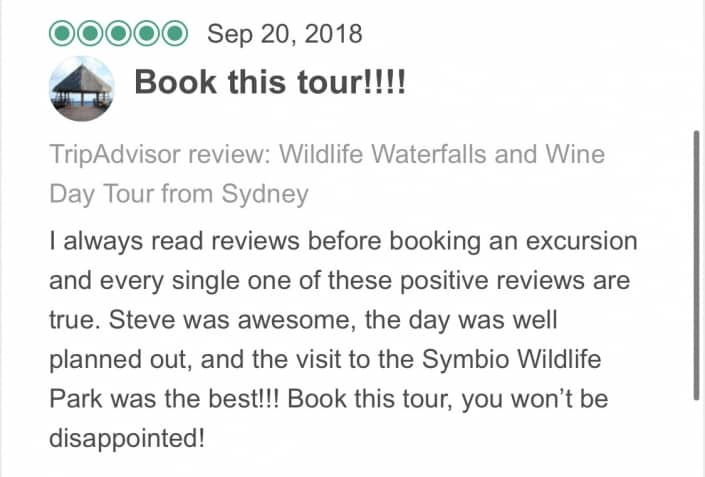 I always read reviews before booking an excursion and every single one of these positive reviews are true. Steve was awesome, the day was well planned out, and the visit to the Symbio Wildlife Park was the best!!! Book this tour, you won't be disappointed!
